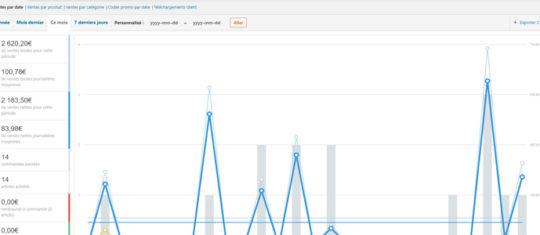 Capture d'écran de l'export des ventes WooCommerce